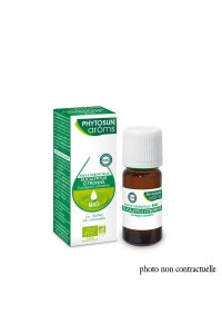 EUCALYPTUS CITRONNE 10mL